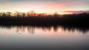 Evening hatch Sacramento River