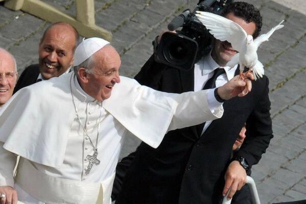 pope like adove